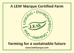 View details of 'LEAF Marque'