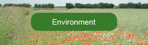 Find out how the environment on Jon's farm has benefited from LEAF membership