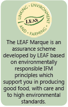 The LEAF Marque