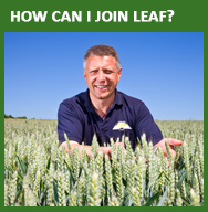 How can I join LEAF